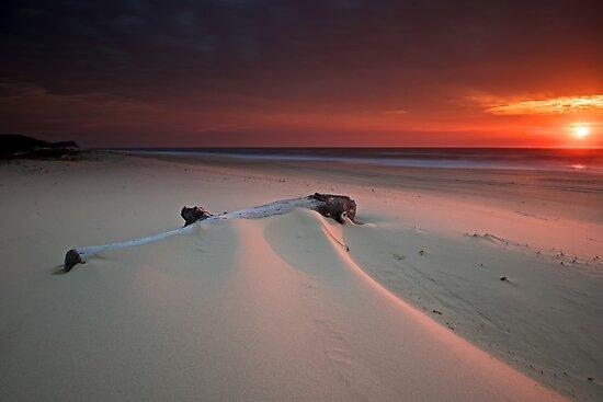 Dawn by donnnnnny