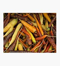 Colorful Carrots. Photographic Print