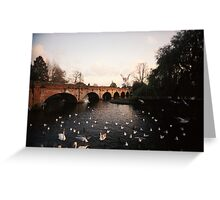 Swans #2 landscape idillic surreal river england Greeting Card