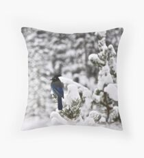 Sitting for a spell Throw Pillow