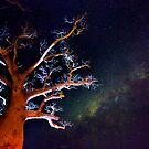 Reaching for the Milkyway by David Haworth