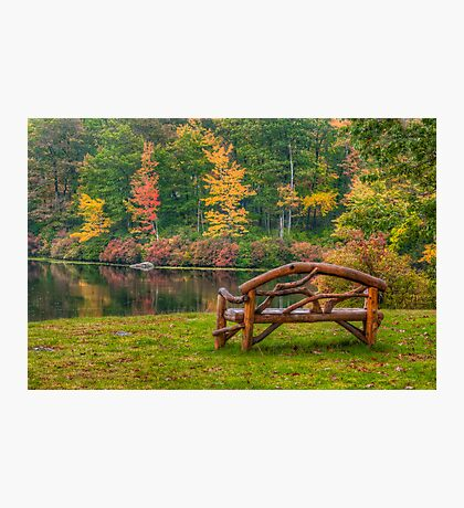 Park Bench With a View  Photographic Print
