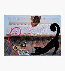 """Nina the little black panther - """"playtime"""" Photographic Print"""