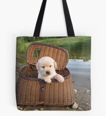 Let's go fishing! Tote Bag