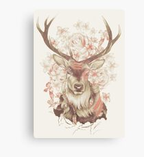 Stag of my Dreams Canvas Print