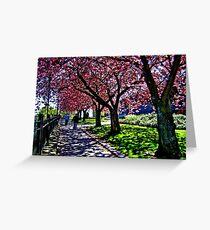 Dappled Shadows, Paisley, Scotland Greeting Card