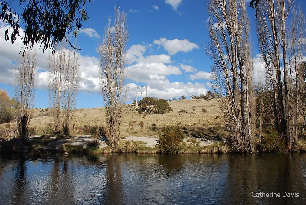 Thredbo River by Catherine Davis