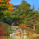 Water Fall In The Fall by John Absher