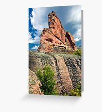 rock beauty  Greeting Card