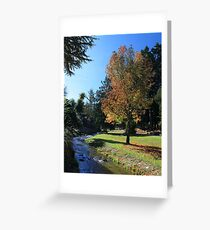 Queenstown Gardens Greeting Card