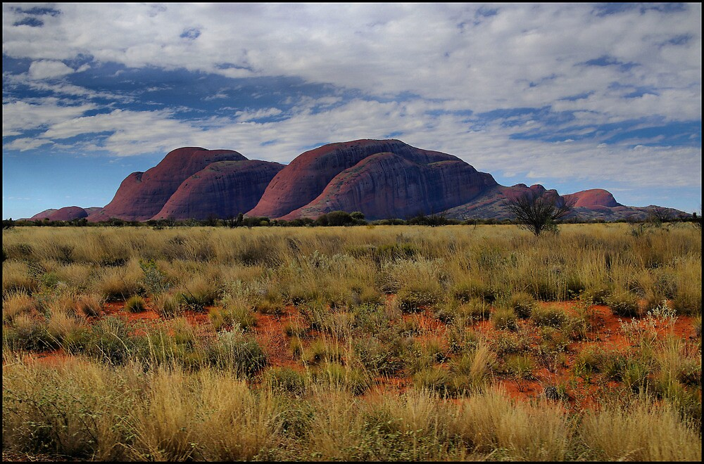The Olgas from afar by kcy011