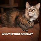 Whut Iz That Smellz? by DebbieCHayes