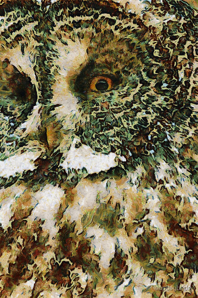 The Glaucus Owl by leapdaybride