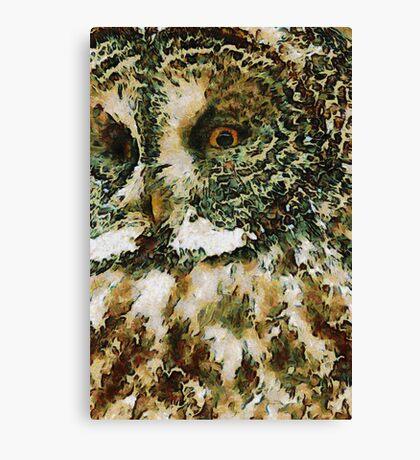 The Glaucus Owl Canvas Print