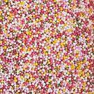 Round Sugar Sprinkles by kenwalters