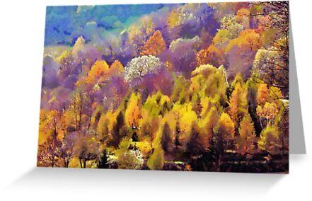 autumn colors by bogfl
