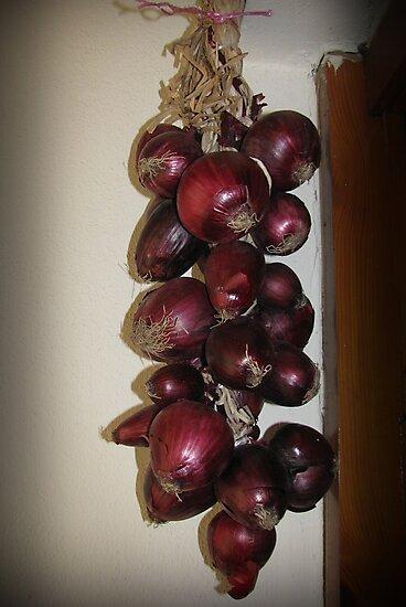 Mor soğanlar by rasim1