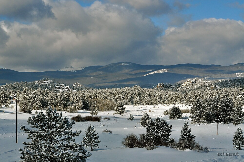 Snowy Scene by schesnut