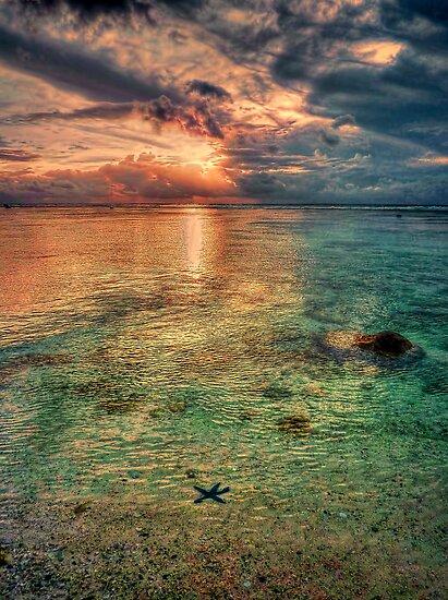 Starfish sunset by Chris Brunton
