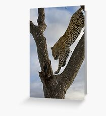 Look Ma, I Can Fly Greeting Card