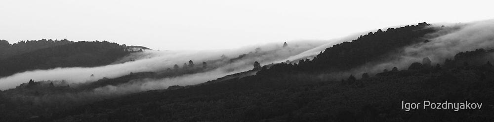 Fog Over Santa Cruz Mountains. by Igor Pozdnyakov
