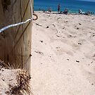 Brighton Fence Two 30 09 12 by Robert Phillips
