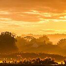 Golden Haze by John Dunbar