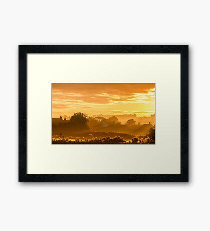 Golden Haze Framed Print