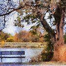 Autumns Tree by Linda Miller Gesualdo