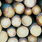 Wood stock by João Figueiredo