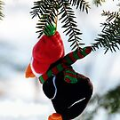 Christmas Penquin iphone case by Elaine Manley
