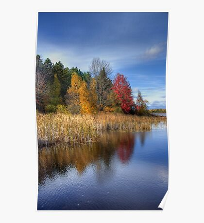 Autumn Wetlands Poster