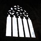 Dryburgh Abbey window frame. by Neil Mouat