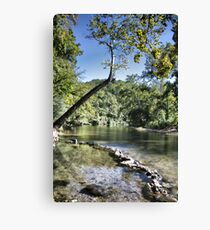 Blue Spring at Hammond Camp Canvas Print