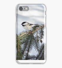 Winter Chickadee iphone case  iPhone Case/Skin