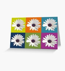 White African Daisy Collage On Bright Background Greeting Card