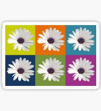 White African Daisy Collage On Bright Background Sticker