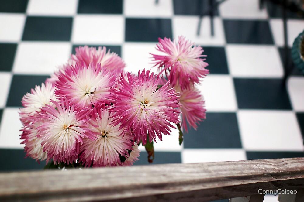 Flores Brighton by Constanza Barnier