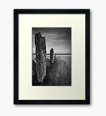 Survivors Framed Print