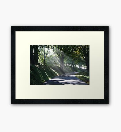 The Mount in the Mist Framed Print