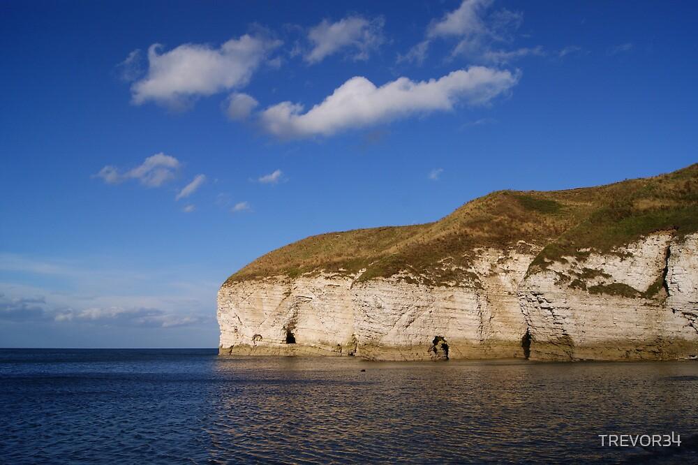 Flamborough Cliffs. North Landing. by TREVOR34