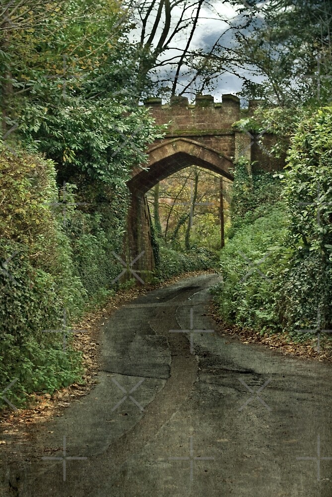 Castle Bridge by Catherine Hamilton-Veal  ©