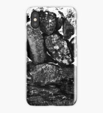 Ireland in Mono: Counting The Days iPhone Case/Skin