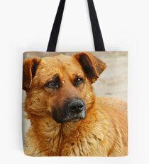 Pup eyes Tote Bag