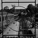 Sheffield Park Station by Tony Hadfield