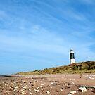 Spurn Point Lighthouse by Neil Clarke