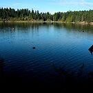 Westwood Lake, Nanaimo by rsangsterkelly