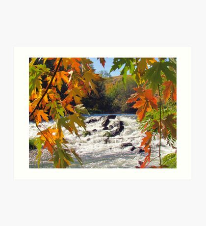 Autumn ~ Mother Nature at Her Finest  Art Print