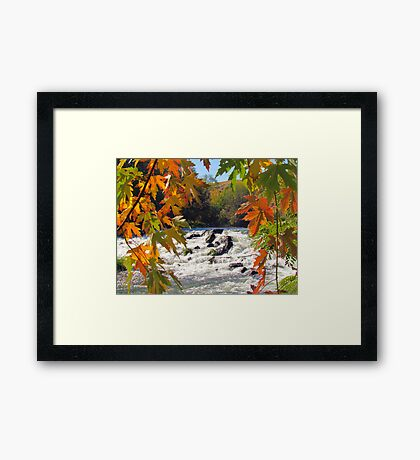 Autumn ~ Mother Nature at Her Finest  Framed Print