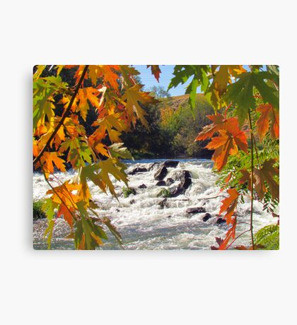 Autumn ~ Mother Nature at Her Finest  Canvas Print